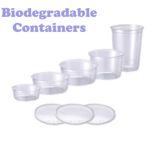 Biodegradable Paper Container